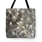 Dandillion Seed Head 2 Tote Bag