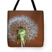 Dandy Tote Bag