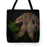 Dangling Dark Sweetgum Tote Bag