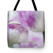Dappled Tulips. The Tulips Of Holland Tote Bag