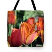 Darby's Tulip 5161 Tote Bag