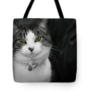 Dare To Look Into My Green Eyes Tote Bag