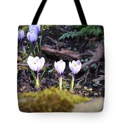 Daring To Grow Tote Bag
