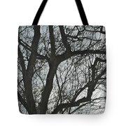 Dark And Deep Tote Bag