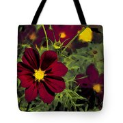 Dark Coreopsis' Tote Bag