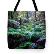 Dark Ferns Tote Bag