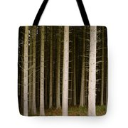 Dark Forest At Kielder Tote Bag