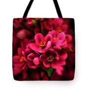 Dark Spring Dreams Tote Bag
