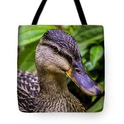 Darling Duck Tote Bag