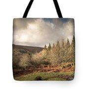 Dartmoor View Tote Bag