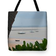 Fannie Bay 1.1 Tote Bag