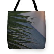 Fannie Bay Sunset 1.6 Tote Bag