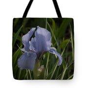 Dashing Pale Violet Iris Tote Bag