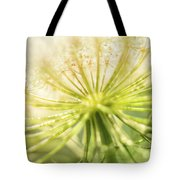 Daucus Carota - Queen Anne's Lace - Wildflower Tote Bag