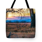 Setting Sun At Rocky Mountain Arsenal Tote Bag by Tom Potter