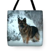 Dawn's First Light Tote Bag