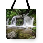 Day 1000 - Lower Forest Glen Falls Tote Bag