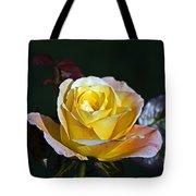 Day Breaker Rose Tote Bag