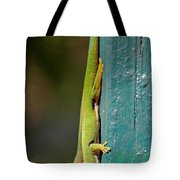 day geckos from Madagascar 1 Tote Bag