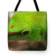 Day Geicko Tote Bag