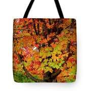Day Glo Autumn Tote Bag