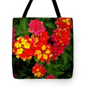 Day Glo Summer Tote Bag
