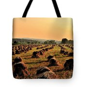 Day Is Done Tote Bag