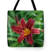 Day Lily 3648 Tote Bag