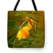 Day Lily Backlit Tote Bag