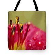Day Lily Dew Tote Bag
