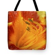 Day Lily In The Rain - 688 Tote Bag