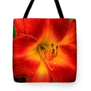 Day Lily1 Tote Bag