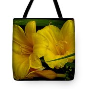 Day Of The Lilies  Tote Bag