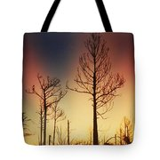Daybreak After Hurricane Andrew Tote Bag