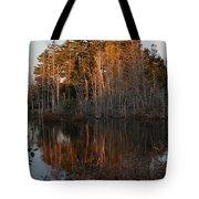 Daybreak At The Pond Tote Bag