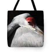 Daydreaming Sandhill Crane Tote Bag