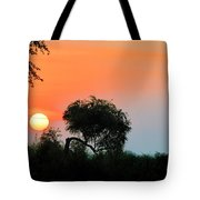 Daylight Tote Bag