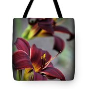 Daylilies Forever Tote Bag
