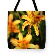 Daylillies0107 Tote Bag