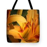 Daylillies0185 Tote Bag