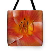 Daylily Bloom Tote Bag