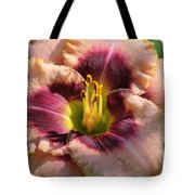 Daylily Collection # 14 Tote Bag