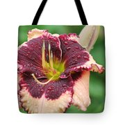 Daylily Collection # 7 Tote Bag