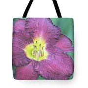 Daylily Collection #26 Tote Bag