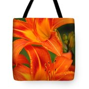Daylily Duo  Tote Bag