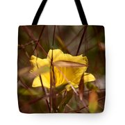 Daylily In Autumn Tote Bag