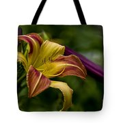 Daylily Picture 452 Tote Bag