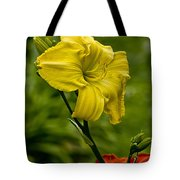 Daylily Picture 469 Tote Bag