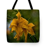 Daylily Picture 474 Tote Bag