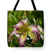 Daylily Picture 494 Tote Bag